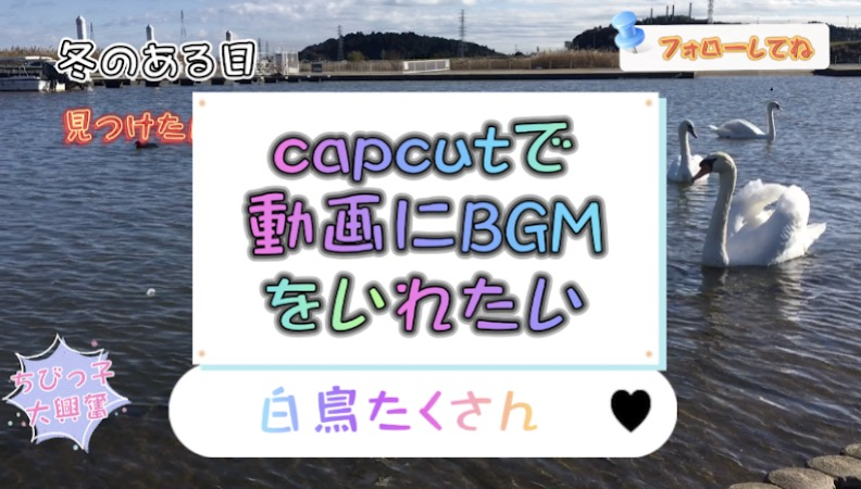 capcutで動画にbgmを入れたい