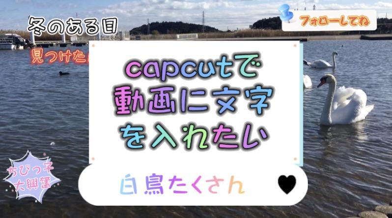 capcutを使って動画に文字を追加する